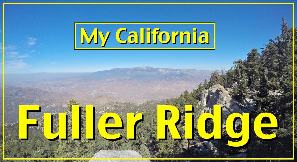 Fuller Ridge cover.png