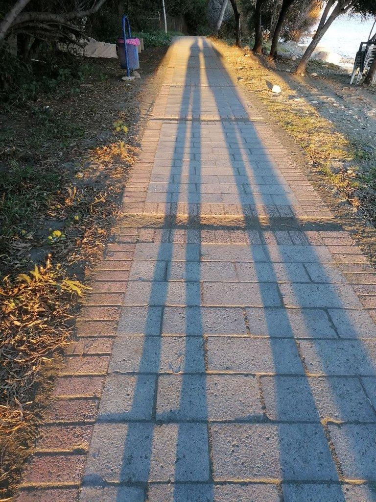 photo_2021_02_25_13.04.08.jpeg