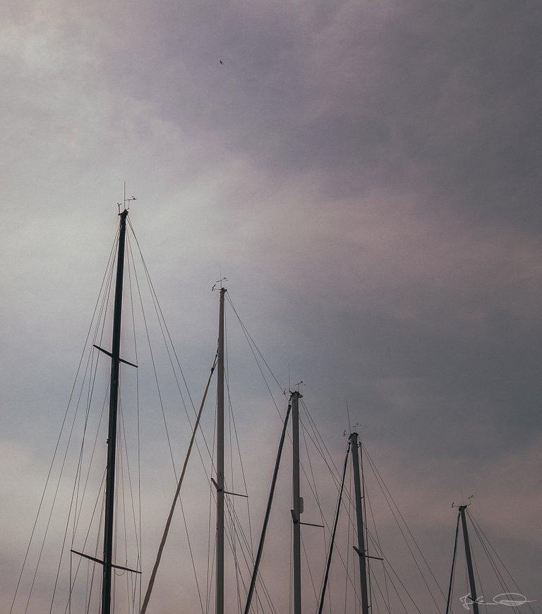 Hive AlphabetHunt Yachts - Lignano, Italy