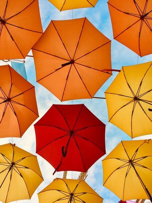 Chiru Photographyhttps://api.pexels.com/v1/photos/2925921