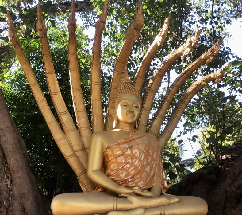 The Enlightenment of Buddha