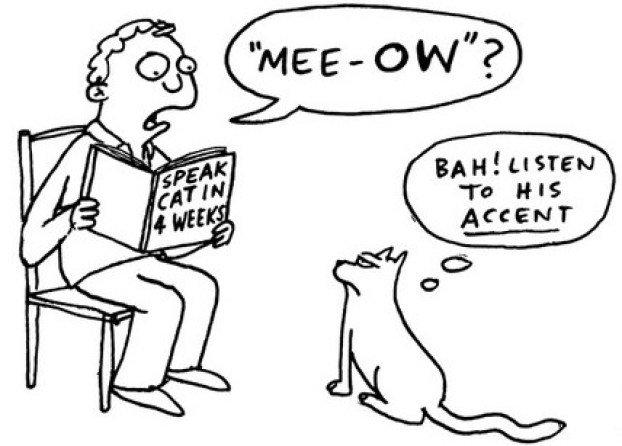 ADsactly Education: Umgang mit Akzenten im Sprachenlehren und -lernen.