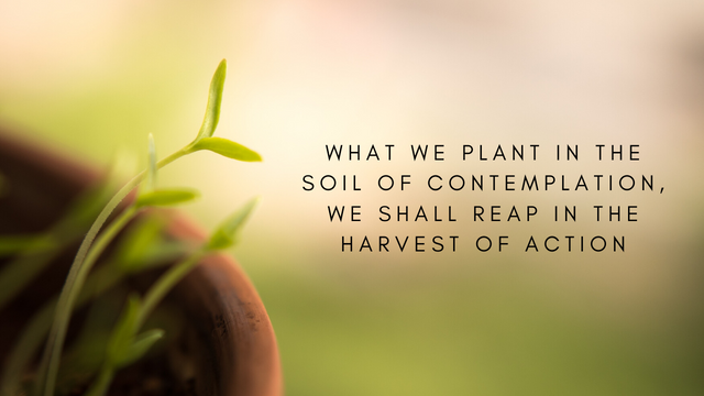 what we plant in the soil of contemplation, we shall reap in the harvest of action.png
