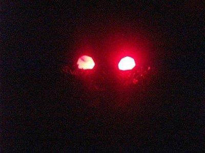 ojos-tenebrosos-halloween.jpg