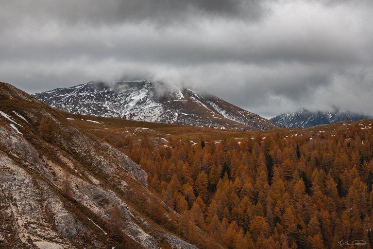 Orange Mountains / Autumn in Austria