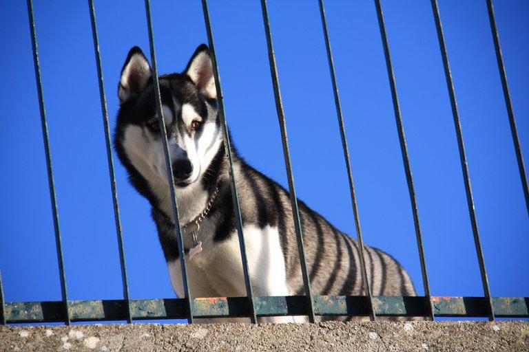 Stella looks at Sunny...