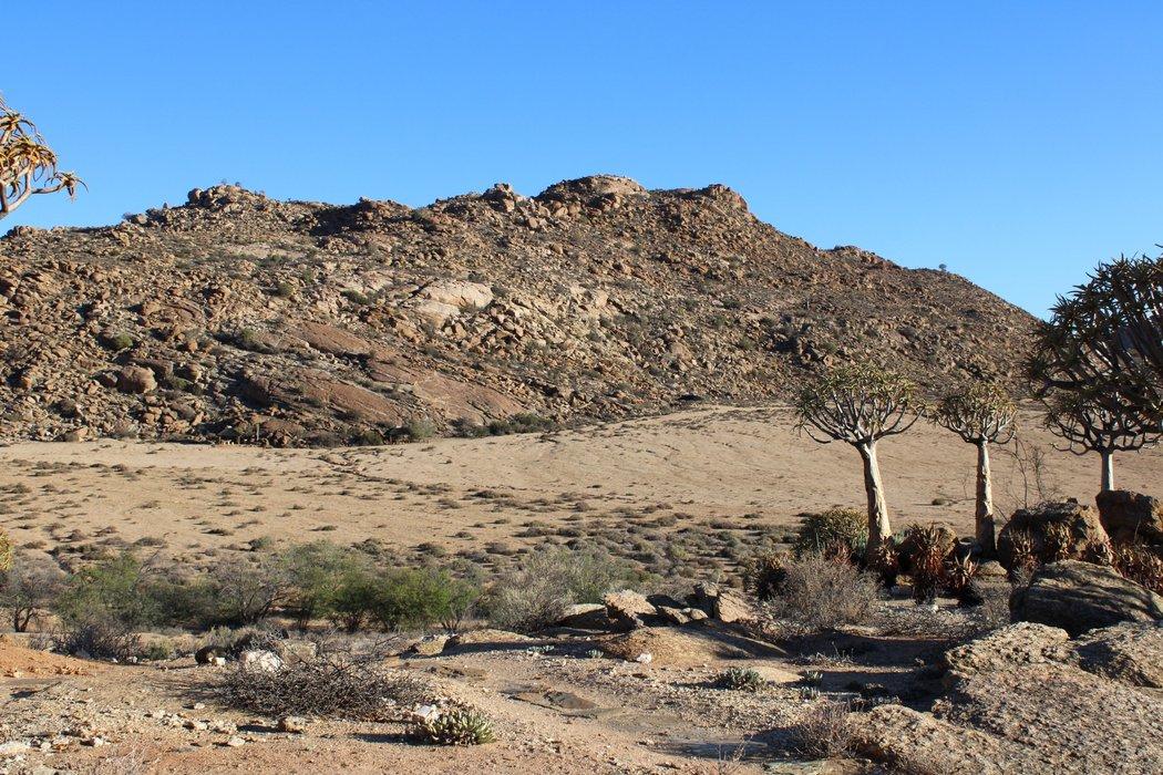 The semi-arid landscape of Goegap Nature Reserve.