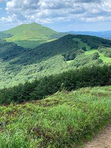 Główny Szlak Beskidzki - Etap 2: Ustrzyki Górne - Smerek