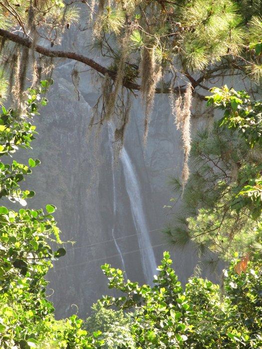 Pomiędzy gałęziami drzew, można ujrzeć w dole wodospad Salto de Jimenoa Uno