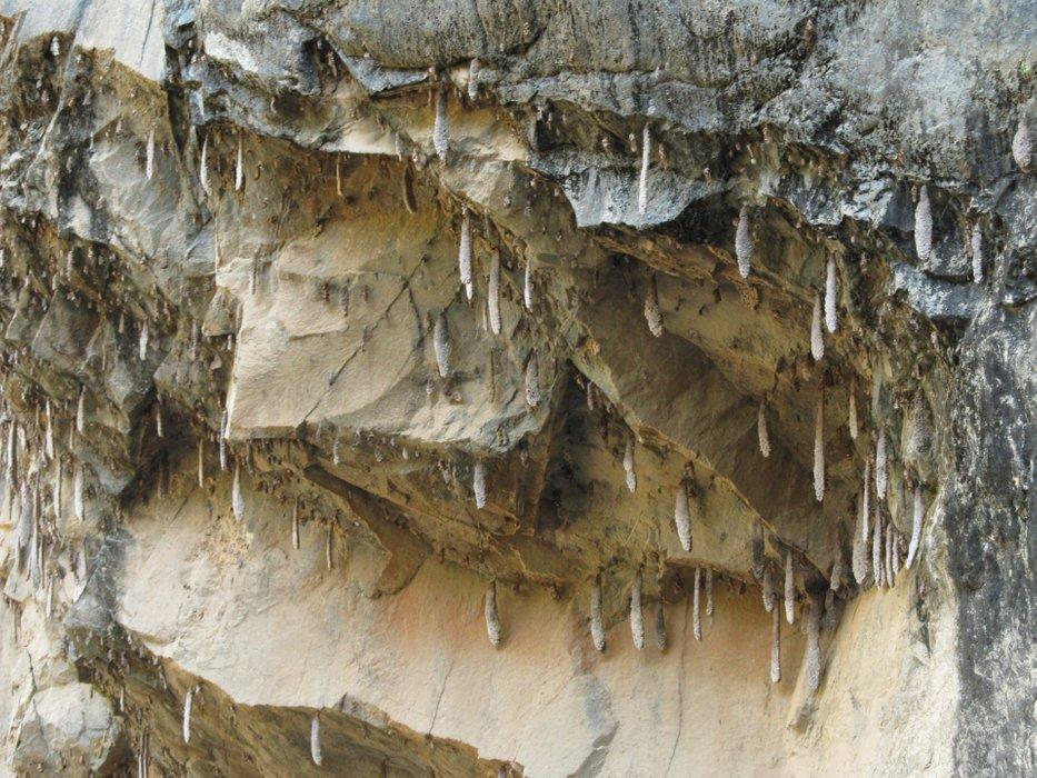 """Dostrzegam również dziwne, zwisające ze skały, duże """"sople"""""""