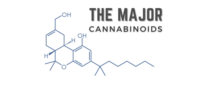 The Major Cannabinoids
