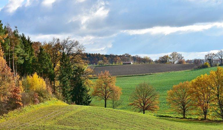 landscape-2946472_960_720.jpg