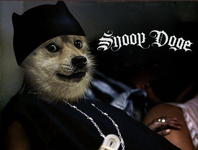 snoopdoge.jpg