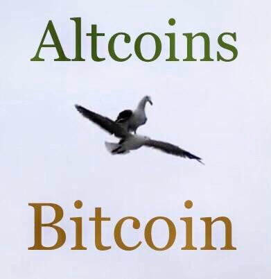 altonbitcoin.jpg