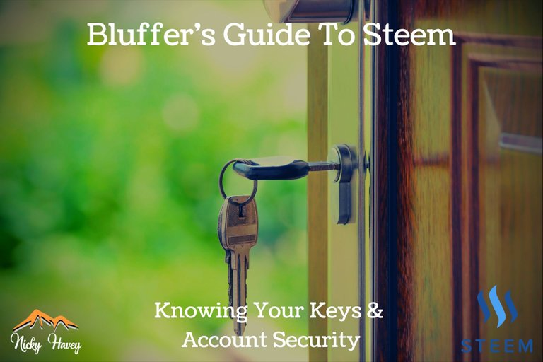 Bluffers Guide to STEEM  Keys and Account Security.jpg