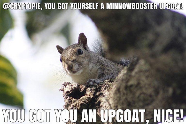 @cryptopie got you a $0.01 @minnowbooster upgoat, nice!