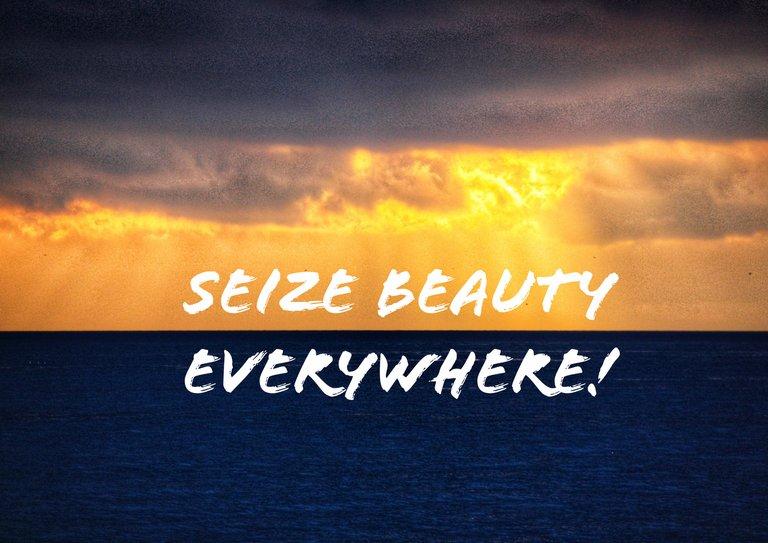 Cogli la bellezza ovunque!