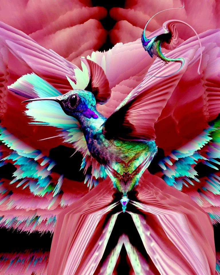 hummingbird_again.jpg