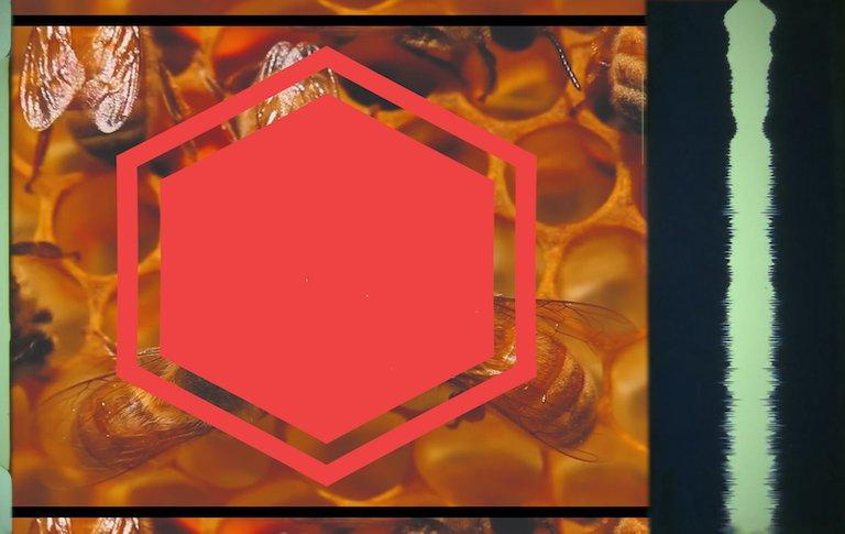 Hive Thumbnail.jpg
