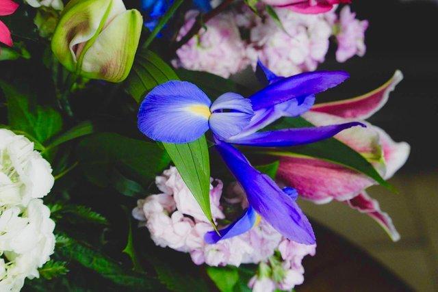 crosheille flowers.jpg