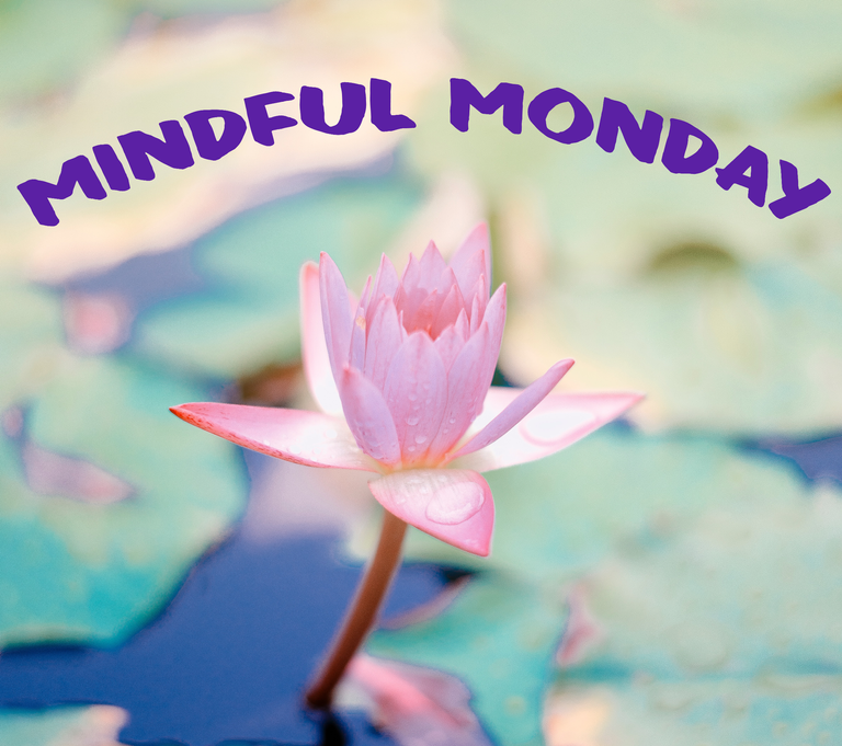 mindful monday pic.png
