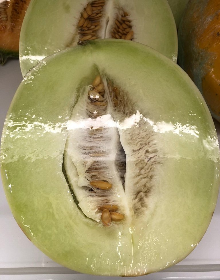 melon_3.jpg