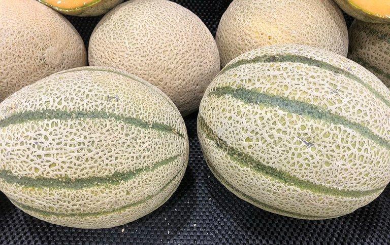 melon_2.jpg