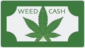 weedcash.png
