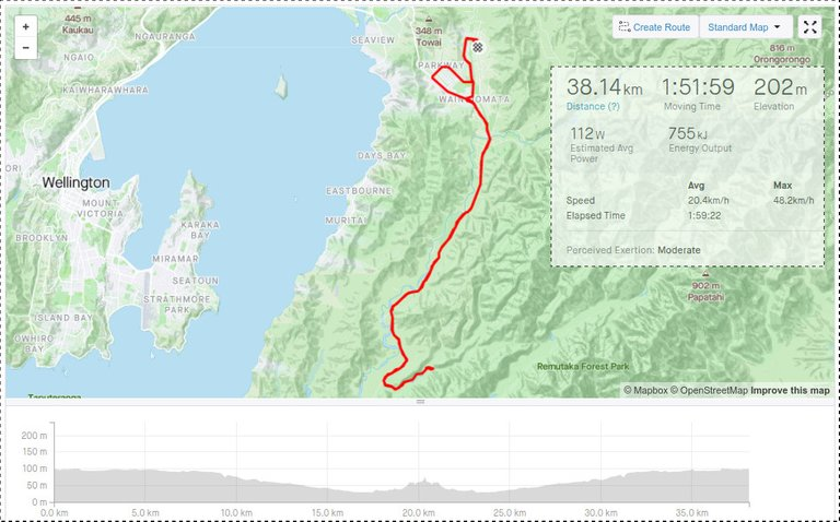 Strava Map and Stats