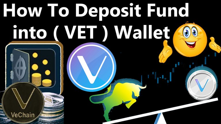 How To Deposit Fund into Vechain ( VET ) Wallet By Crypto Wallets Info.jpg