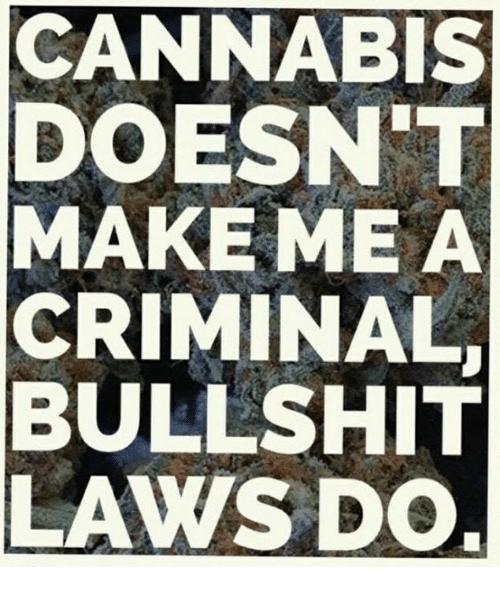 cannabis-doesnt-make-me-a-criminal-bullshit-laws-do-35841672.png