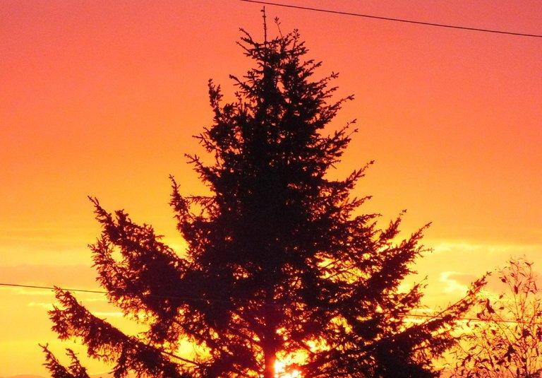 WLE0017-Sunset.jpg