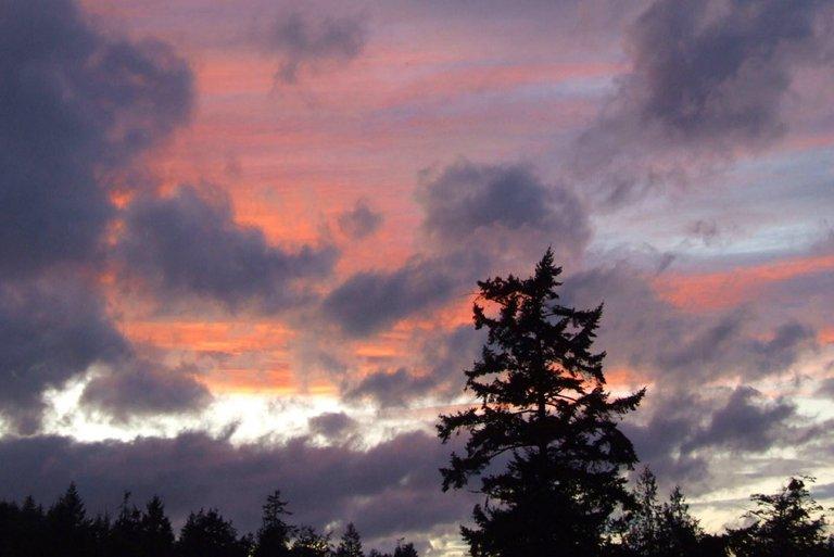 WLE0016-Sunset.jpg