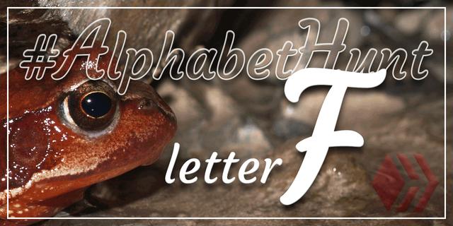 Hive AlphabetHunt - Letter F