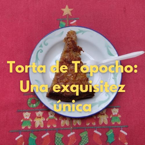 TORTA TOPOCHO 1.png