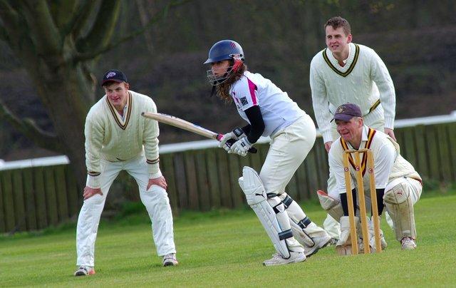 cricket-724615_1280.jpg