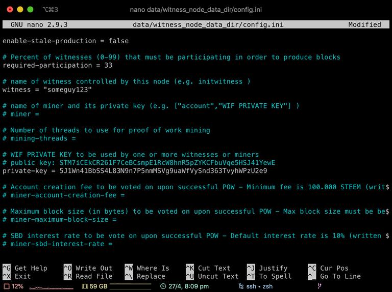 Screenshot of witness config.ini