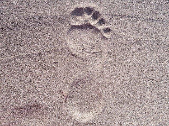 footprint-2624609-640.jpg