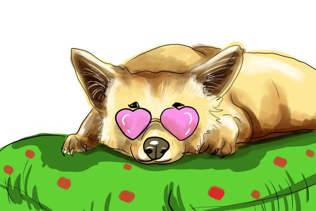 dog pink glasses(465).jpg