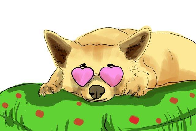 dog pink glasses(464).jpg
