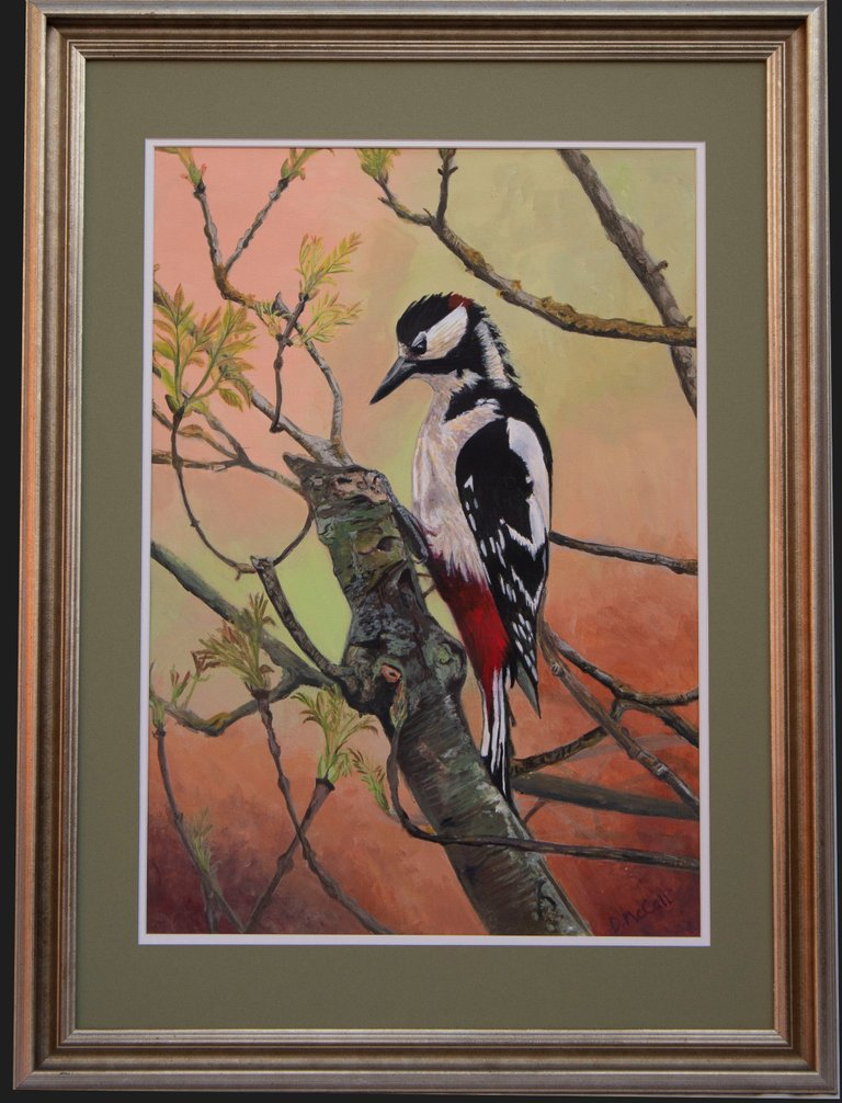 Greatspotted Woodpecker with Frame_ Grey.jpg