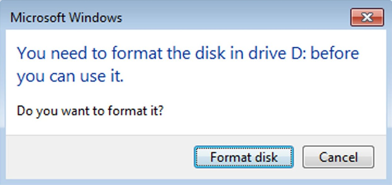 you need to format the disk