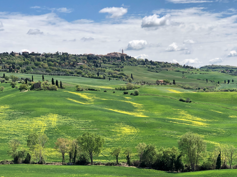 The marvelous landscape of the Val d'Orcia