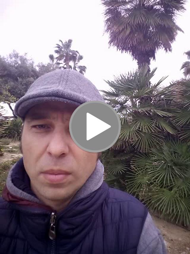 videos/439ad1541145d6ae949a8f3ba08f25ad-00001.png