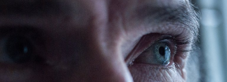 eyes13.jpg