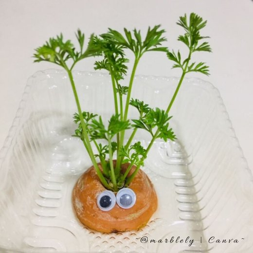 Carrot top, not by @marblely