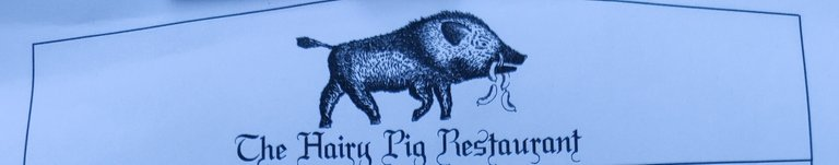 Hairy Pig.jpg
