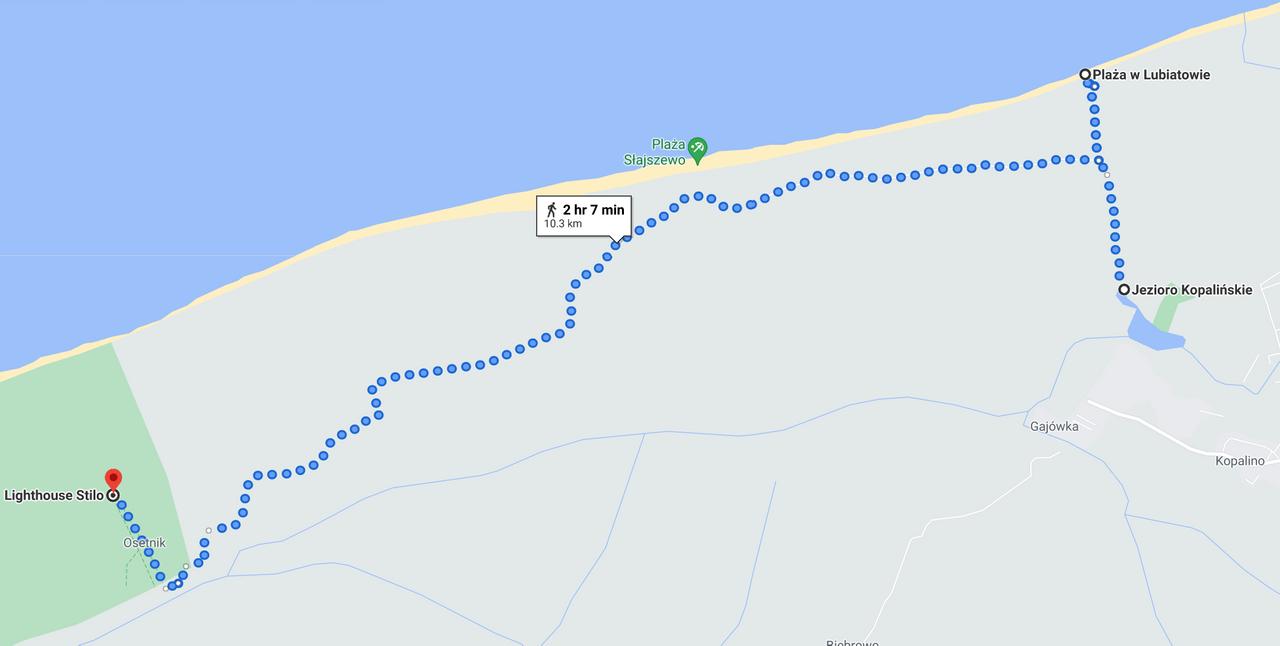 Przybliżona trasa spaceru
