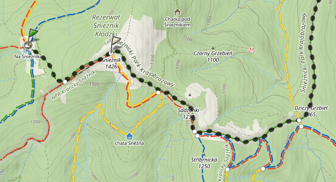 Szlaki od szczytu Śnieżnika do przełęczy Płoszczyna