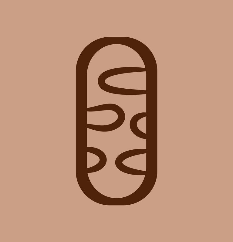 Mitochondria.png